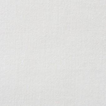 コットン×無地(オフホワイト)×ベッチン_全3色