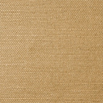 ラミー×無地(イエローゴールド)×8号帆布