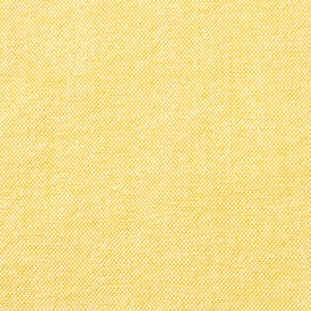 コットン×無地(イエロー)×オックスフォード_全3色 イメージ1