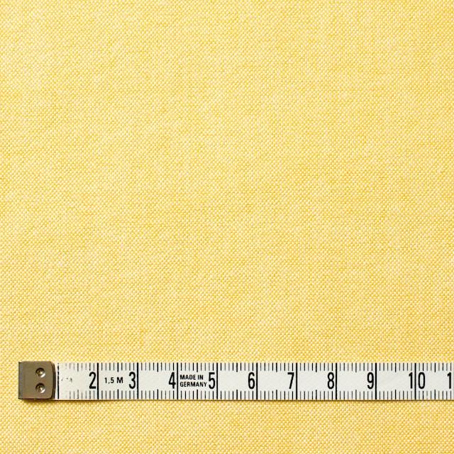 コットン×無地(イエロー)×オックスフォード_全3色 イメージ4