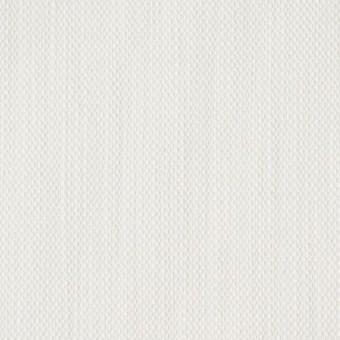 コットン×無地(オフホワイト)×デニム