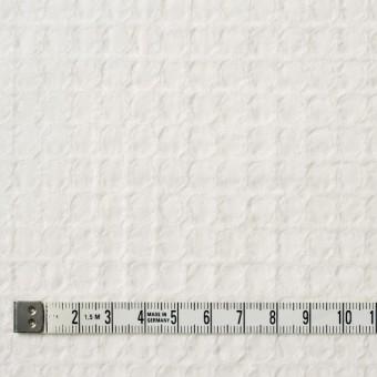 コットン×無地(オフホワイト)×シーチングドビー_全2色 サムネイル4