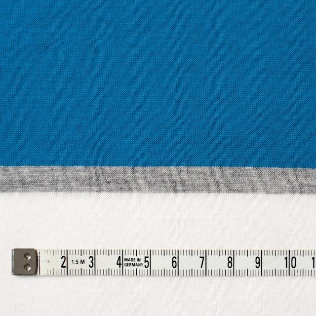 コットン×ボーダー(ブルーミックス)×天竺ニット_全3色_パネル イメージ4