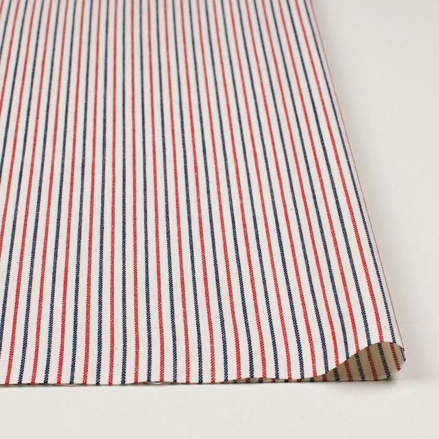コットン×ストライプ(トリコロール)×かわり織 イメージ3