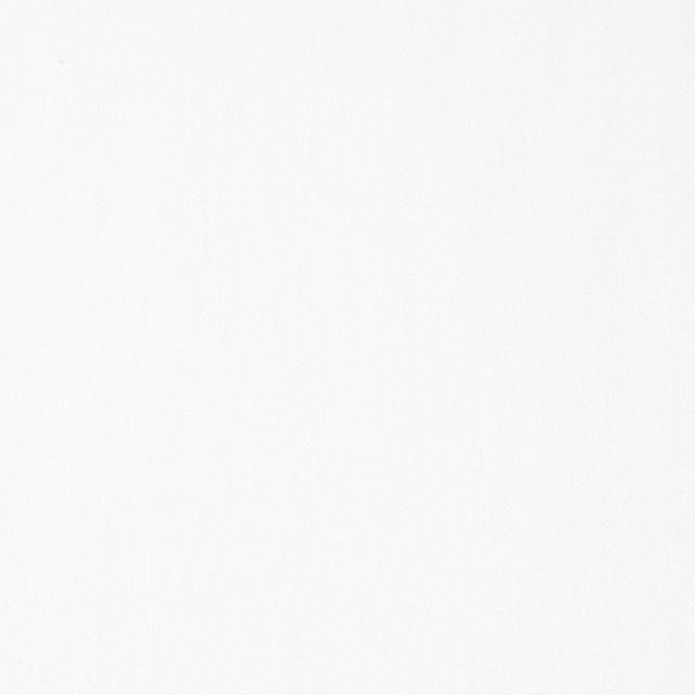 コットン×無地(オフホワイト)×薄サージ イメージ1