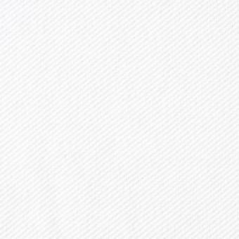 コットン×無地(ホワイト)×鹿の子ニット