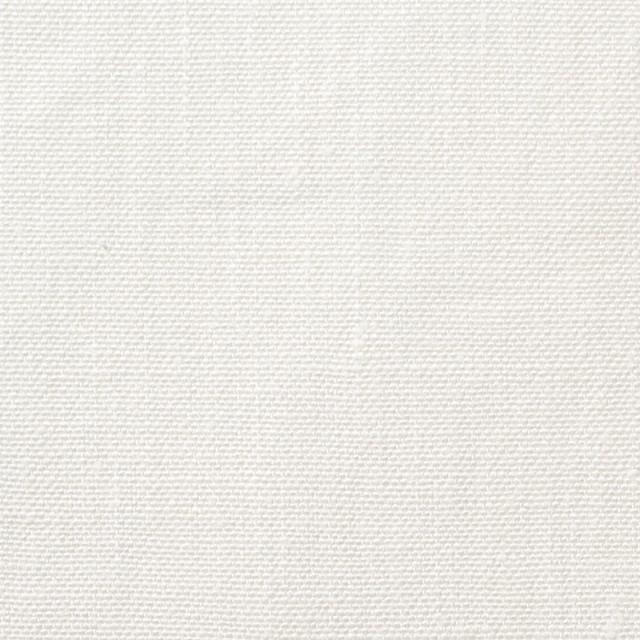 リネン×無地(オフホワイト)×キャンバス イメージ1