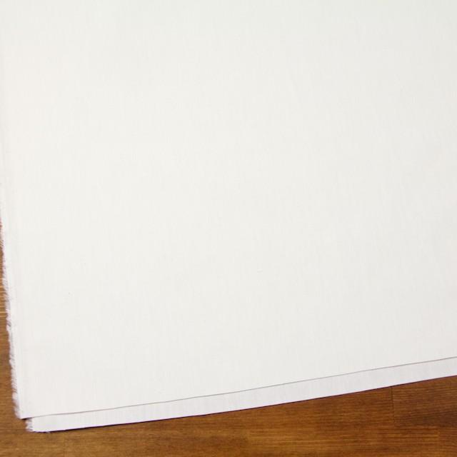 リネン&コットン×無地(オフホワイト)×キャンバス イメージ2