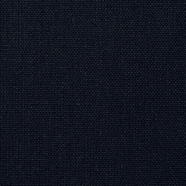 ヘンプ&コットン×無地(ブラック)×キャンバス イメージ1