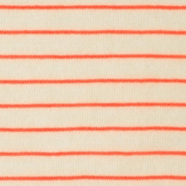 コットン&アクリル混×ボーダー(オレンジ)×天竺ニット_全4色 イメージ1