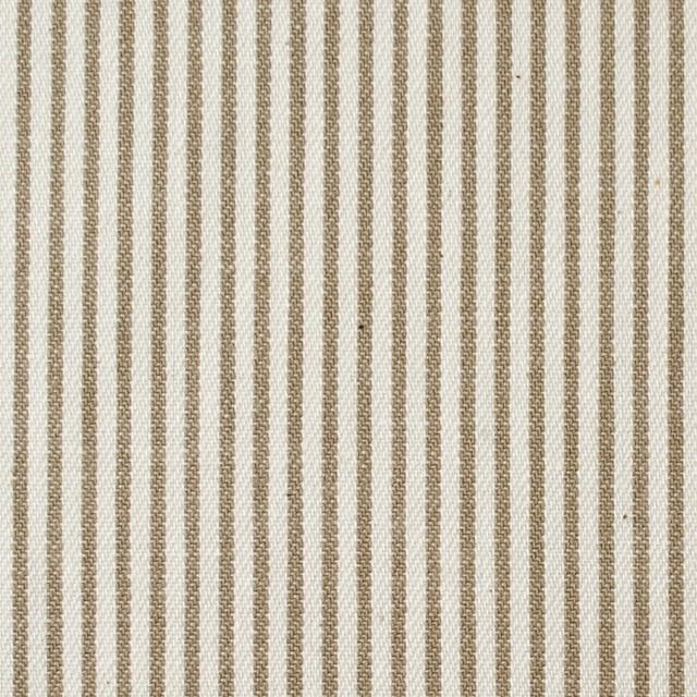 コットン×ストライプ(カーキベージュ)×かわり織 イメージ1
