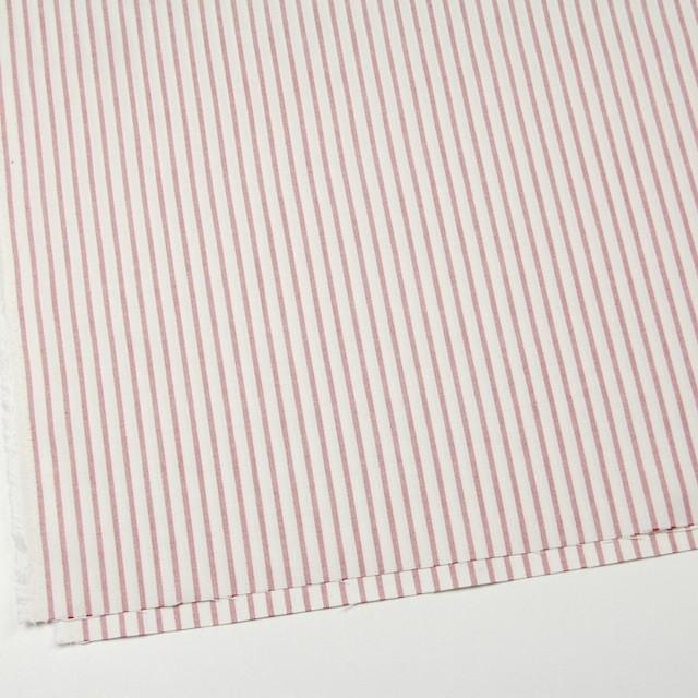 コットン×ストライプ(レッド)×オックスフォード_全3色 イメージ2