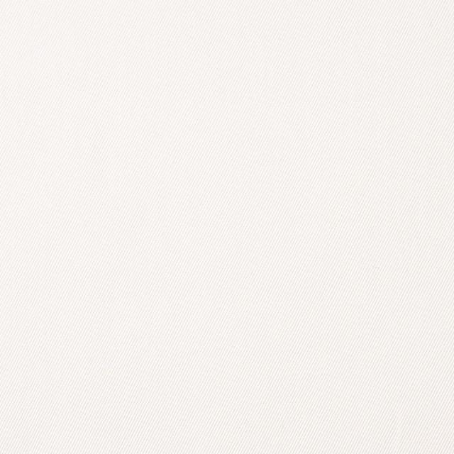 コットン×無地(オフホワイト)×サージ_全6色(シリーズ1) イメージ1