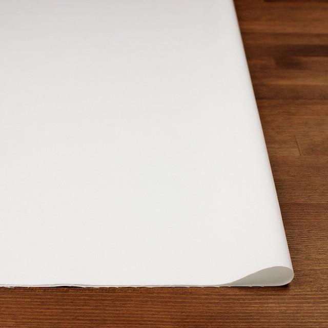 コットン×無地(オフホワイト)×サージ_全6色(シリーズ1) イメージ3