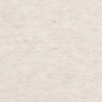 コットン×無地(アイボリー)×裏毛ニット(裏面起毛)