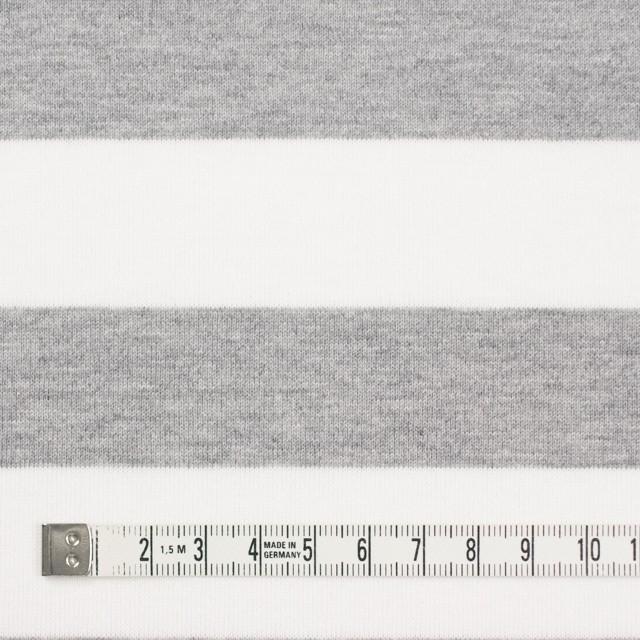 コットン×ボーダー(ホワイト&ライトグレー)×天竺ニット_全4色 イメージ4