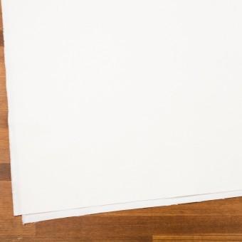 コットン×無地(ホワイト)×厚オックスフォード_全3色 サムネイル2