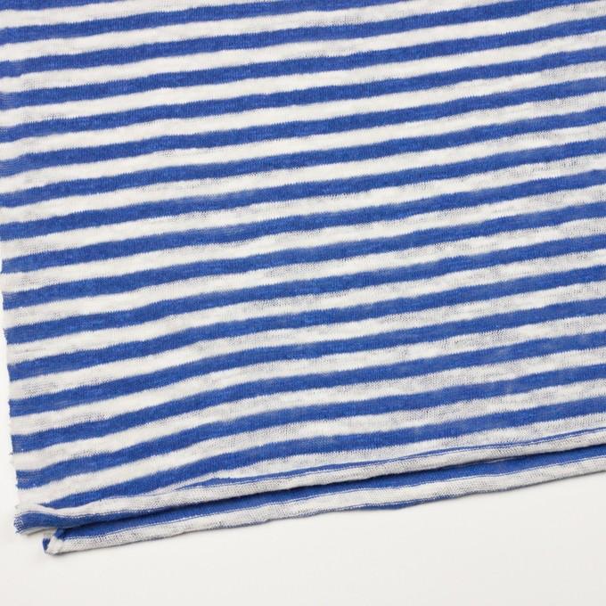 コットン×ボーダー(ブルー)×天竺ニット イメージ2