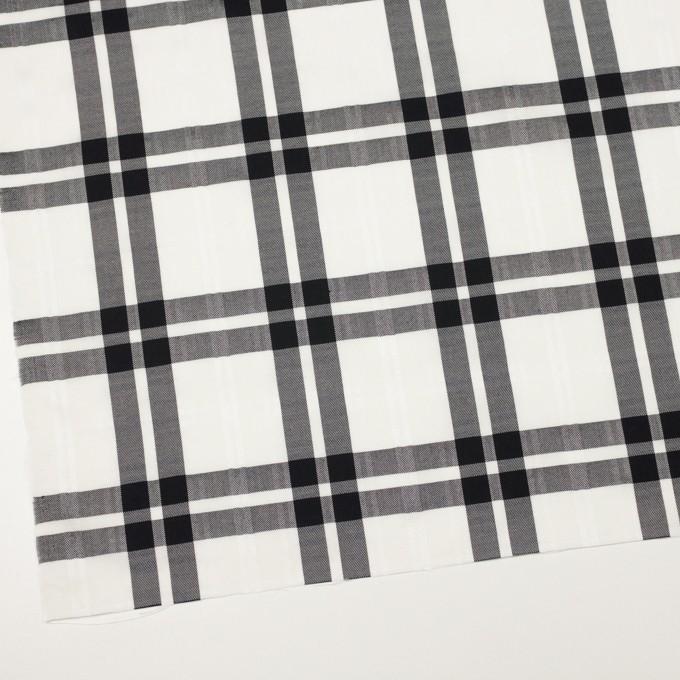 コットン&ポリエステル×チェック(ブラック)×ブロードジャガード イメージ2
