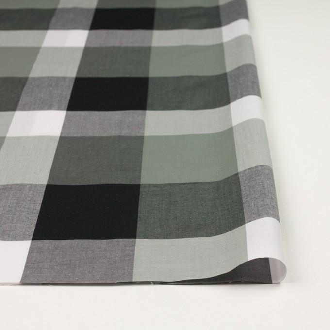 コットン×チェック(スレートグリーン&ブラック)×ブロード イメージ3