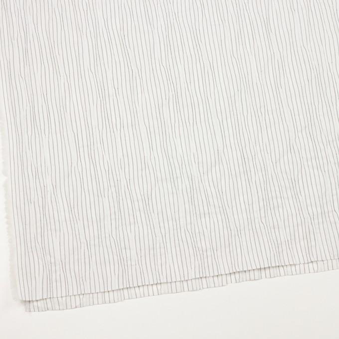 コットン&ナイロン混×ストライプ(オフホワイト&ブラック)×タテタック イメージ2