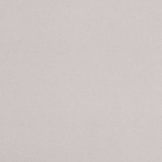 コットン×無地(シルバーグレー)×チノクロス_パラフィン加工_全2色 イメージ1