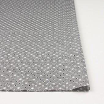 コットン×ドット(グレー)×シャンブレー刺繍 サムネイル3