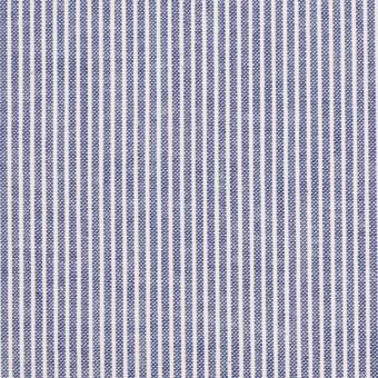 コットン×ストライプ(ブルー)×コードレーン