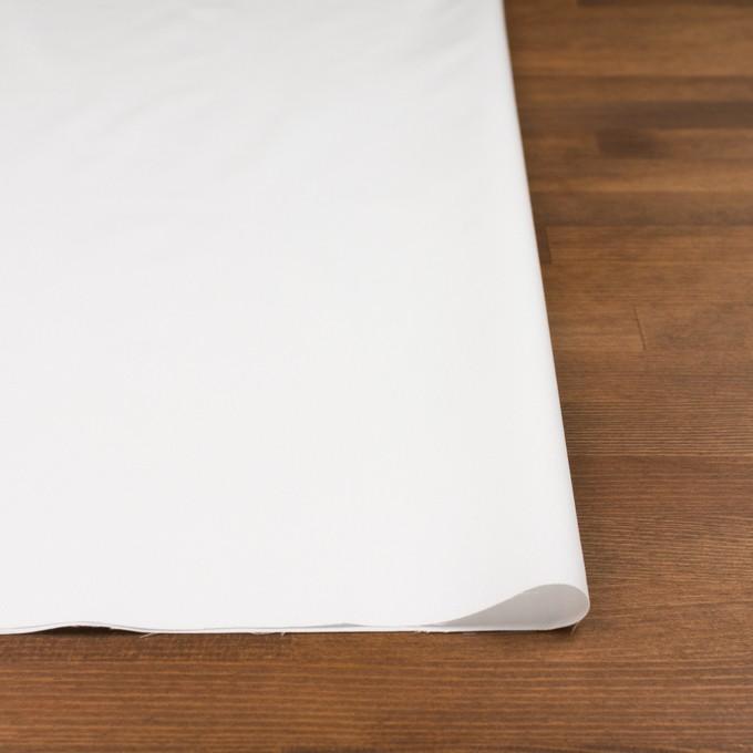 コットン×無地(オフホワイト)×ジャガード イメージ3