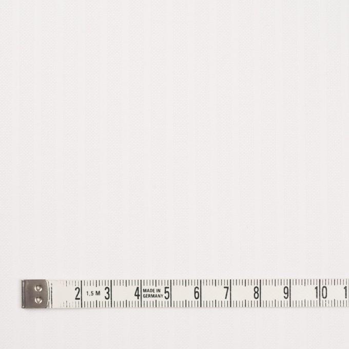 コットン×ストライプ(オフホワイト)×ジャガード イメージ4