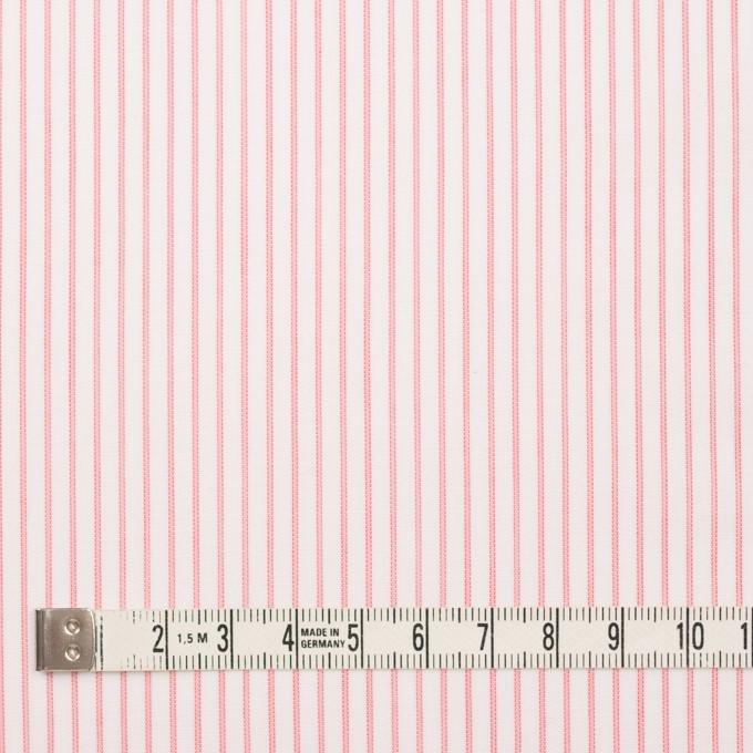 コットン×ストライプ(ピンク)×ボイル_全2色 イメージ4