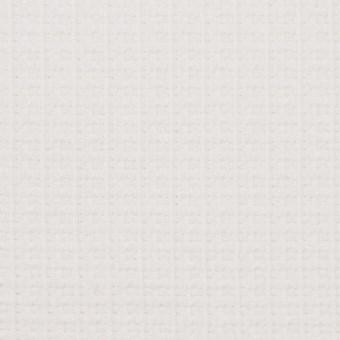 コットン&ナイロン×無地(オフホワイト)×斜子織_全2色_イタリア製