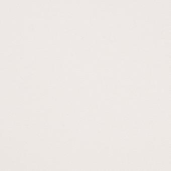 コットン×無地(ホワイト)×チノクロス サムネイル1