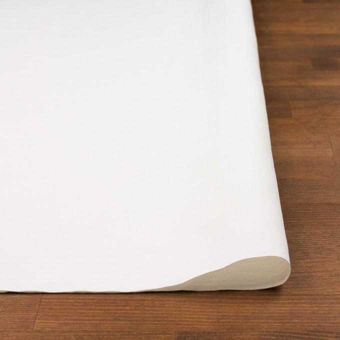 コットン×無地(オフホワイト)×かわり織_イタリア製 イメージ3