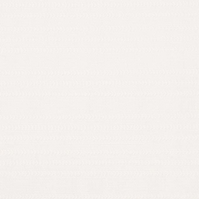 コットン×無地(オフホワイト)×かわり織_イタリア製 イメージ1
