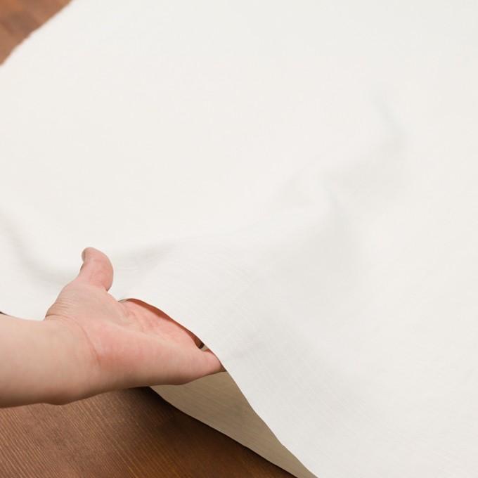 コットン×無地(オフホワイト)×かわり織_イタリア製 イメージ5
