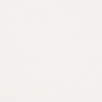 コットン&シルク×無地(オフホワイト)×かわり織_イタリア製