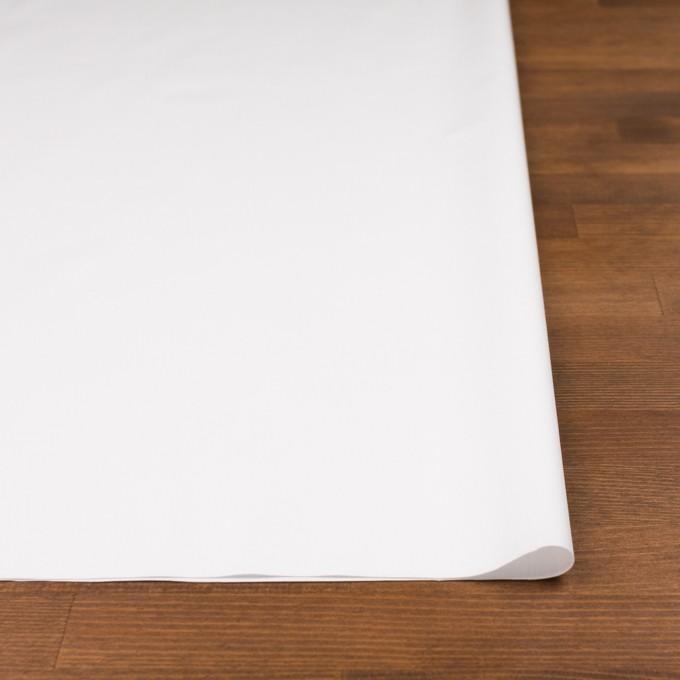 コットン×無地(オフホワイト)×ブロード イメージ3