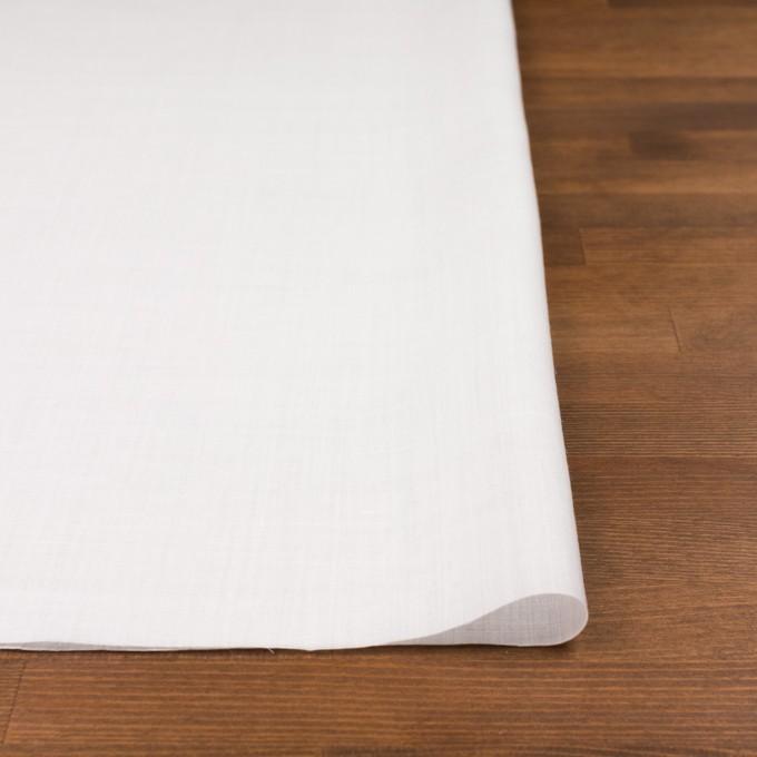 ラミー×無地(オフホワイト)×ボイル イメージ3