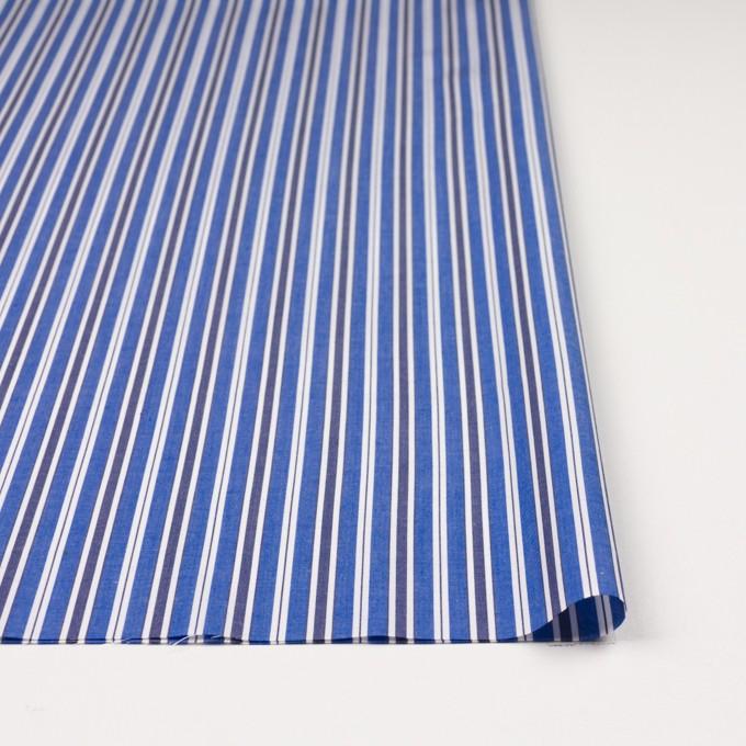 コットン×ストライプ(ブルー&ネイビー)×ブロード イメージ3