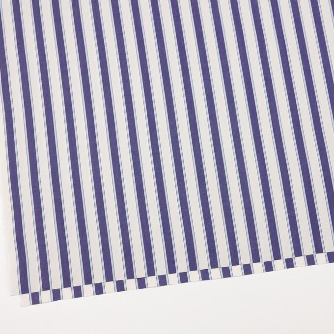 コットン×ストライプ(プルシアンブルー)×ブロード_全2色 イメージ2