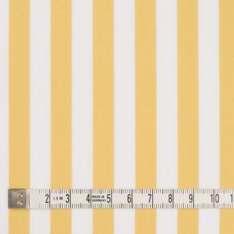 コットン×ストライプ(マスタード)×ブロード_全2色 サムネイル4