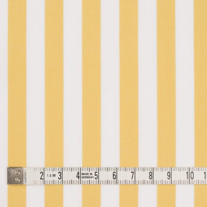 コットン×ストライプ(マスタード)×ブロード_全2色 イメージ4
