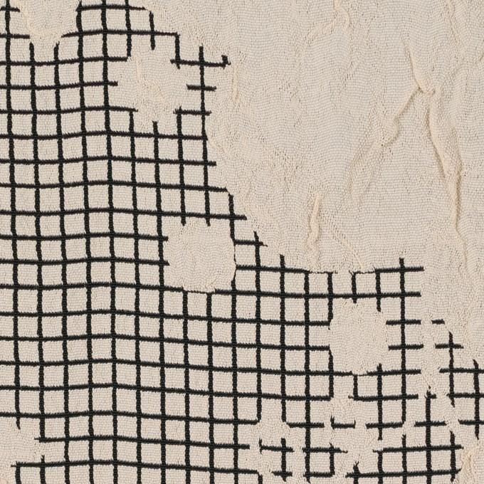 レーヨン&アセテート×幾何学模様(バニラ&ブラック)×風通織 イメージ1