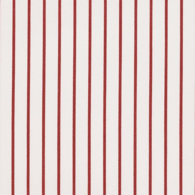 コットン×ストライプ(レッド)×ブロード_イタリア製 イメージ1