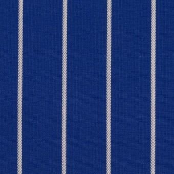 コットン×ストライプ(マリンブルー)×かわり織 サムネイル1