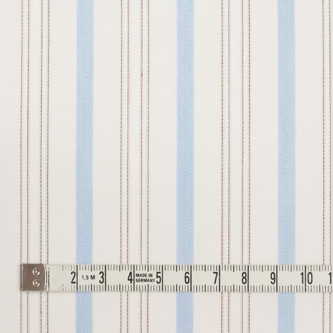 コットン×ストライプ(ペールブルー&ブラウン)×ブロードジャガード イメージ4