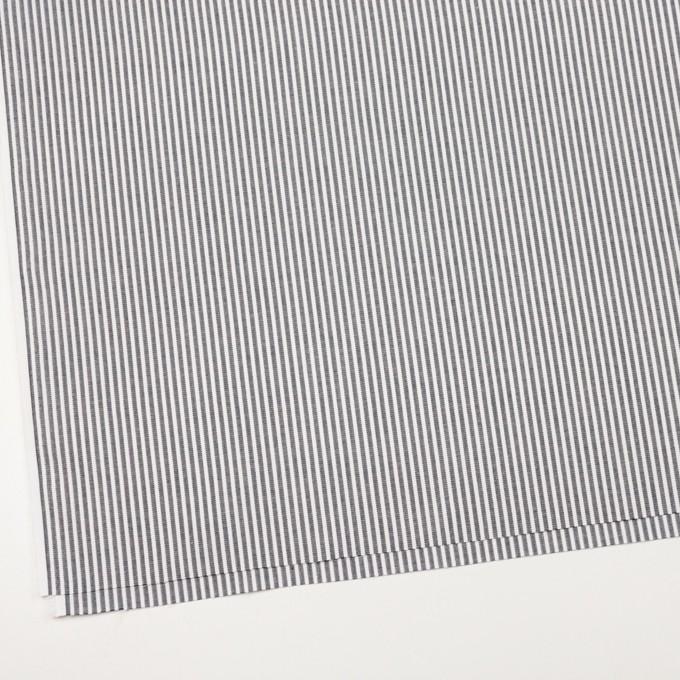 コットン×ストライプ(グレー)×コードレーン イメージ2