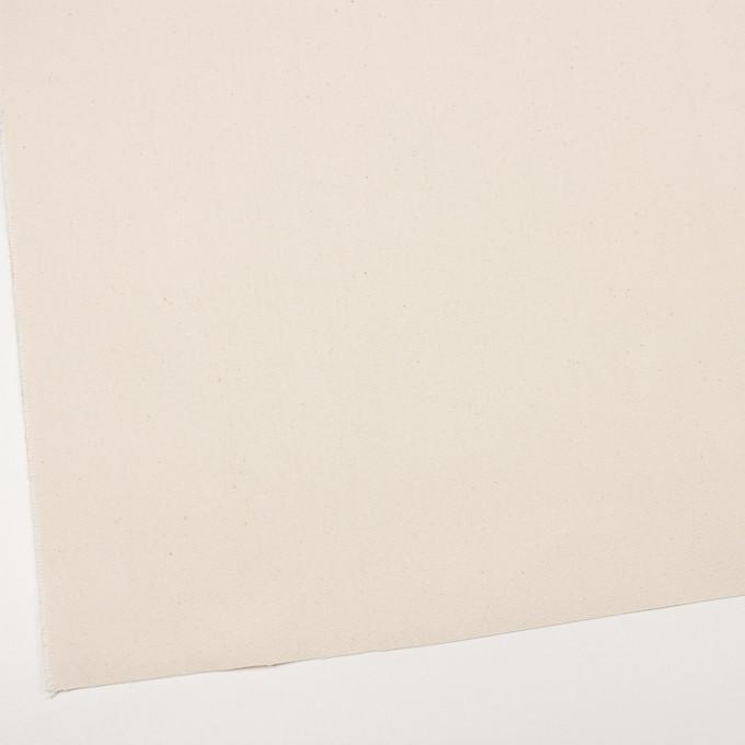 コットン×無地(キナリ)×8号帆布 イメージ2
