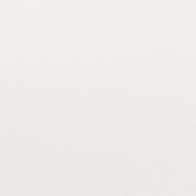 コットン×無地(ホワイト)×ブロード イメージ1